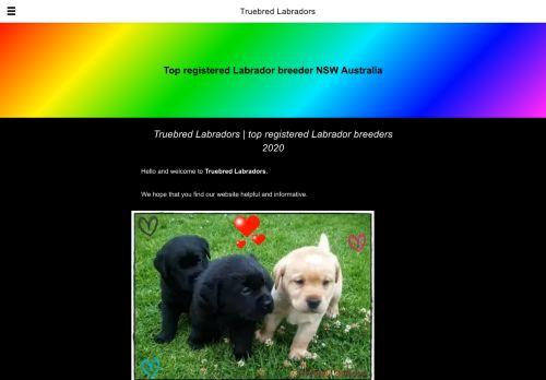 Truebred Labradors | top registered Labrador breeders 2020